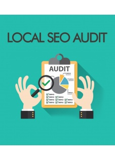 local_seo_audit