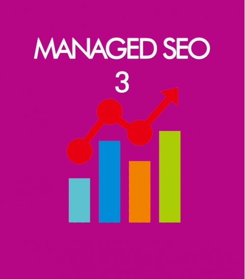 managed_seo_3